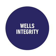 Wells Integrity
